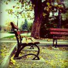 Avazak_ir-Autumn10.jpg