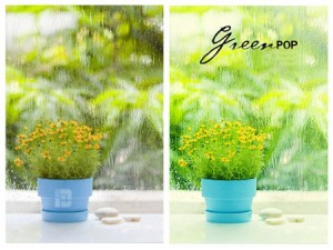 Green-Pop-Actions-For-Photoshop