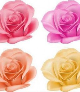 Vectors-–-Bright-Roses-Set1-258x298