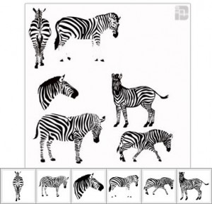 Zebra-Shapes