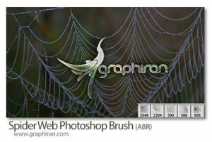 spier-web-brush
